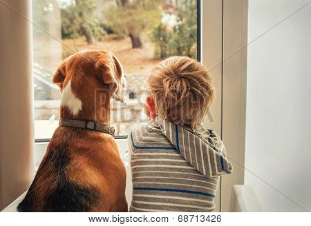 little boy with best friend looking through window poster