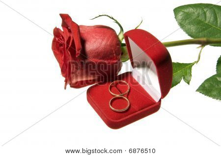 Golden Wedding Rings And Rose Isolated On White Background