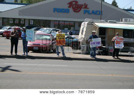 anti nazi protestors