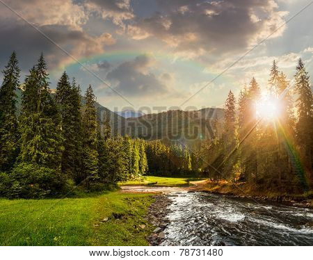 Mountain River In Pine Forest At Sunset