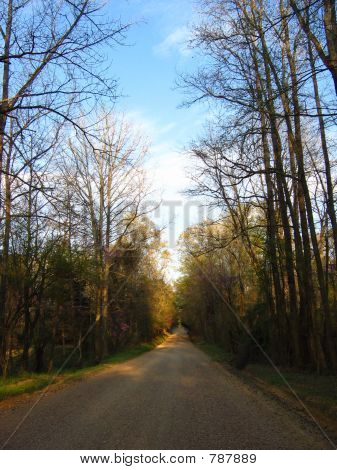 Peaceful Country Road