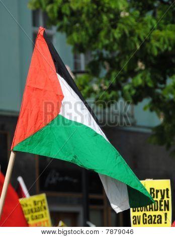 palstinian flag