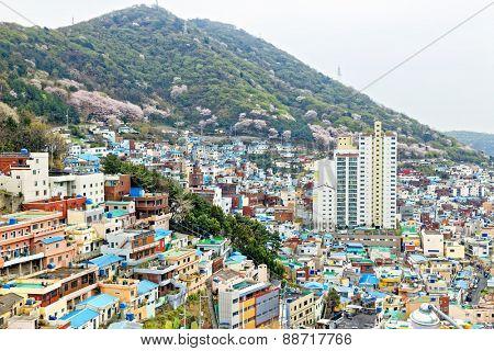 Gamcheon Culture Village, Busan, South Korea.