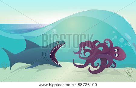 shark for octopus