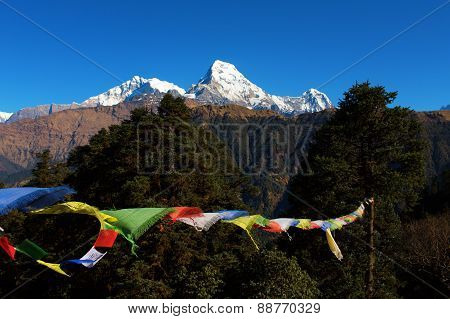Buddhist prayer flags and The Himalayas, Nepal poster
