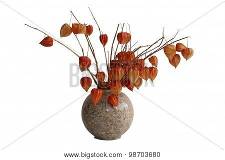 Physalis (tomatillo) in the vase