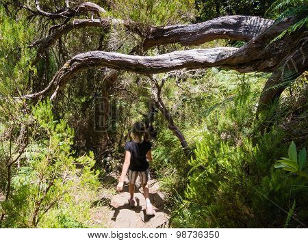 Girl Walking In Levada In Madeira Island