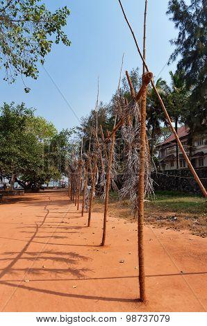 Installation Of Periscopic Liberty. Pallavi Paul