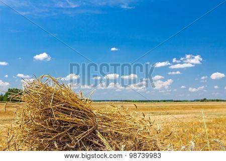 View On Landscape Of Farmland After The Harvest.