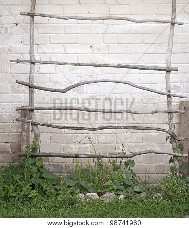 ladder for creeper plants, wall background