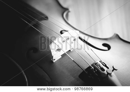 Time To Practice Violin Black And White Color Tone Style