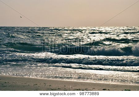 Seawaves in the light