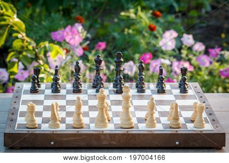 Chess board with chess pieces on wooden desk with flower bed on background. Selective focus on white pieces. Outdoors chess game