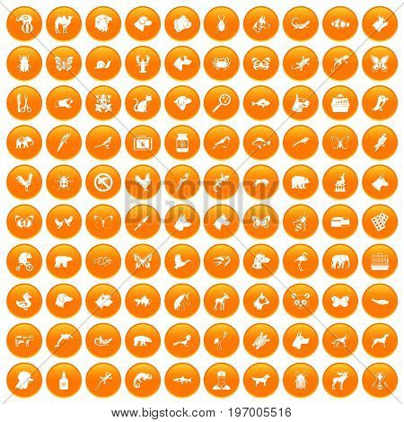 100 animals icons set in orange circle isolated on white vector illustration