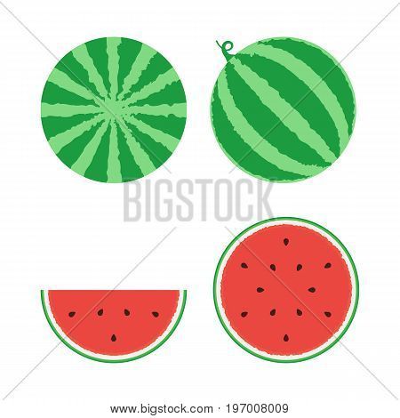 Whole watermelon and slice set. Vector illustration in cartoon style design isolated on white