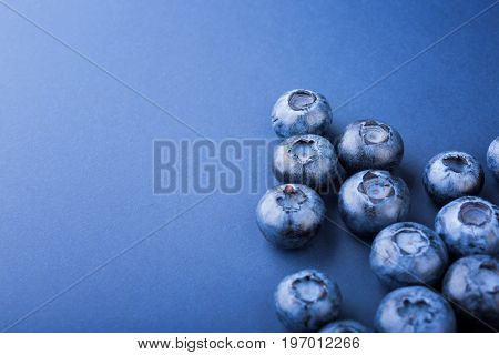 A view from above on delicious and juicy blueberries on a light blue background. Tasteful, raw and ripe blueberries full of vitamins. Organic ingredients for nutritious summer desserts.