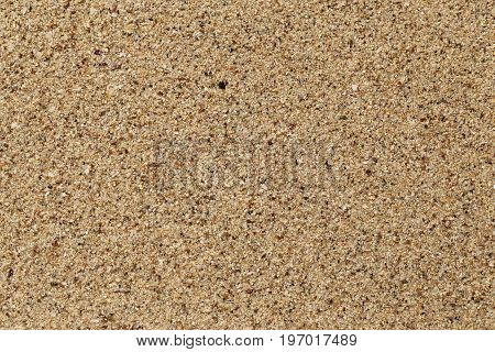 Texture of wet sand for use as background.