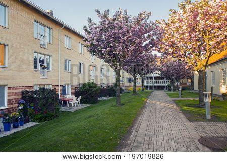 Sweden Malmo apartments at summer