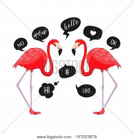 Red Flamingos With Speech Bubbles Icons. Vector Illustration. Chat Balloons. Funny Messages. Hello,