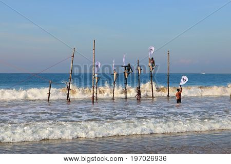 Mirissa Sri Lanka 25-02-2017: Preparation for competitions on traditional fishing on poles among Sri Lankan fishermen