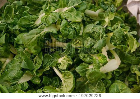 Choy sum vegetable on display for sale at a luxurious market