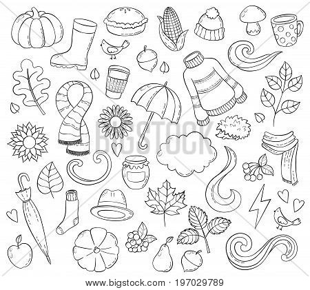 Set autumn hand drawn doodle illustrations. Background, template, backdrop, wallpaper Icon collection
