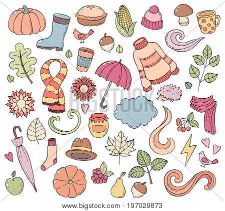 Set autumn hand drawn doodle illustrations. Background, template, backdrop