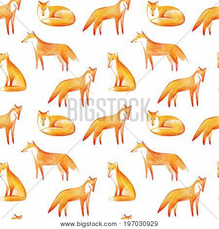Seamless pattern of a fox.Forest animals.Watercolor and pencil color hand drawn illustration.White background.