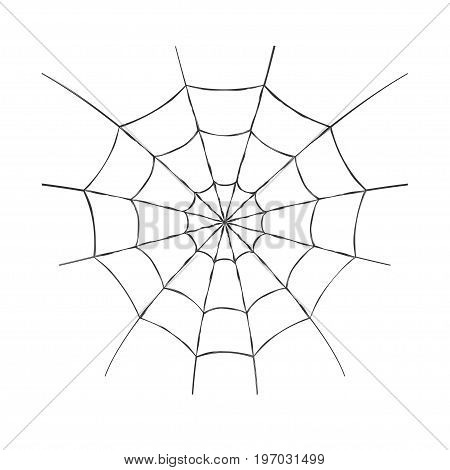 Cobweb. Spider web for Halloween design or t-shirt print. Isolated on white background. Vector illustration.