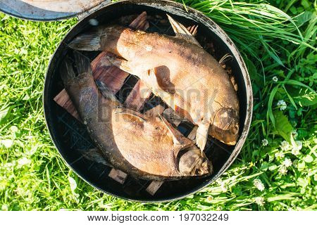 Fish Smoking Process For Home Use. Smoked Mackerel. Close Up Smoking Process Fish In Smoking Shed For Home Use. Smoke From Smokehouse
