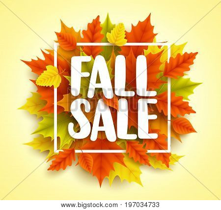 Fall sale text vector banner with colorful 3D realistic autumn maple leaves in yellow orange background for seasonal marketing promotion. Vector illustration.