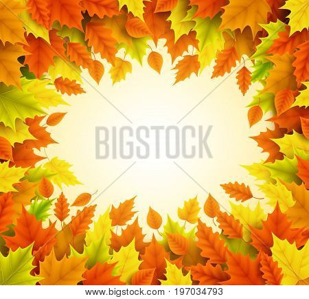 Autumn vector background with empty blank space for text and boarder frame of fall season leaves in orange and yellow color. Vector illustration.