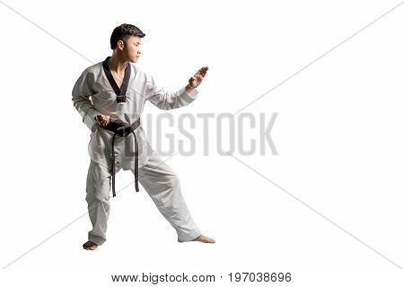 Portrait Of An Asian Professional Taekwondo Black Belt Degree (dan) Preparing For Punch. Isolated Fu