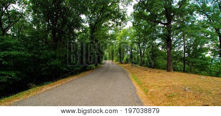 Trail and road located at Oak Mountain State Park in Alabama