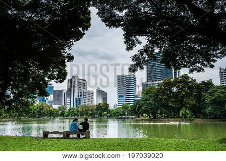 Bench Near Tree In Public Park With Couple Lover.