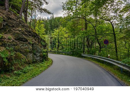 Road in the forest, Bohemian Switzerland national park