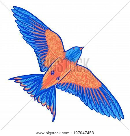 Blue tropical bird on a white background. bird of paradise. Hand drawn brush stroke elements. Vector illustration