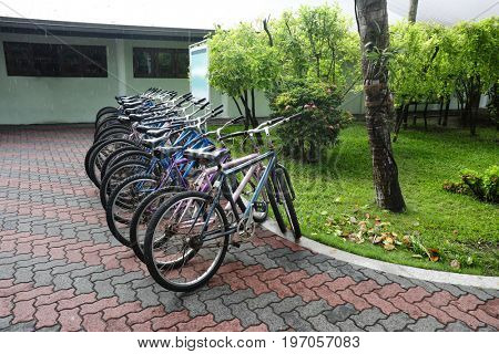 Bicycles parked outdoors near green lawn