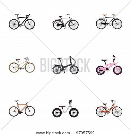 Realistic Timbered, Training Vehicle, Cyclocross Drive And Other Vector Elements