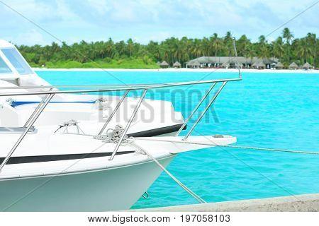 Modern boats berthed at resort