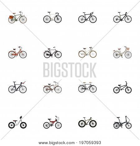 Realistic Training Vehicle, Extreme Biking, Journey Bike And Other Vector Elements
