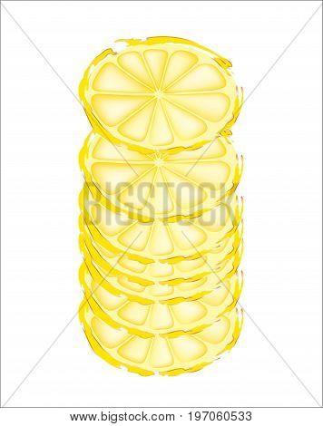 Slices of lemon cut cross section on white background