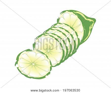 Slices of green lime sliced in cross section