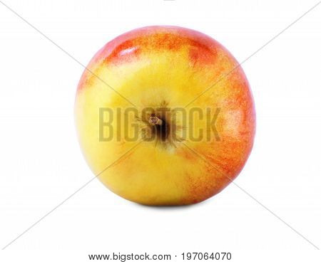 Fresh and colourful apple, isolated over the white background. A single whole and perfectly round apple close-up. Nutritious red and green apple full of vitamins. Summer fruits.