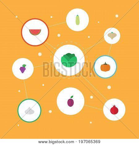 Flat Icons Cauliflower, Pumpkin, Garlic And Other Vector Elements