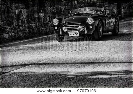 GOLA DEL FURLO, ITALY - MAY 19: A.C. ACE 1957 on an old racing car in rally Mille Miglia 2017 the famous italian historical race (1927-1957) on May 19 2017