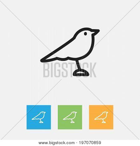 Vector Illustration Of Zoology Symbol On Thrush Outline