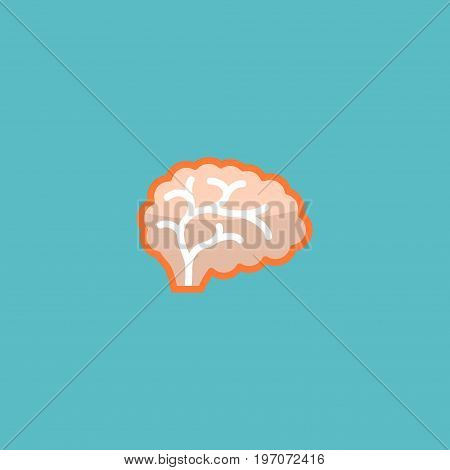 Flat Icon Brain Element. Vector Illustration Of Flat Icon Mind Isolated On Clean Background