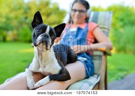 Dog And Teenage Girl Resting In The Garden