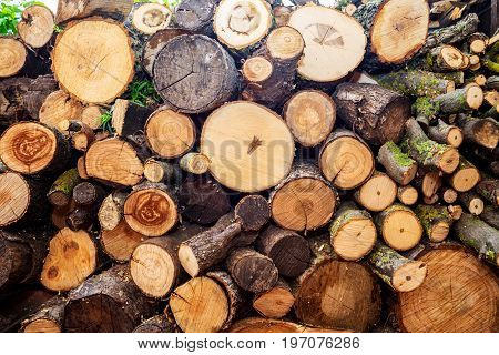 Firewood. Pile of wood logs. Chopped firewood on a stack. Natural wooden background.